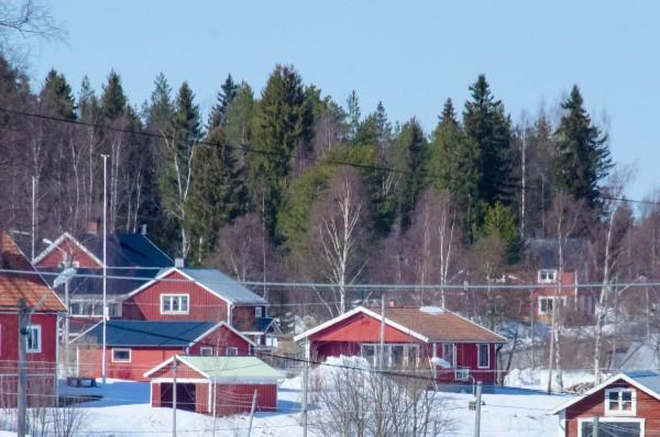 2017-04-20-skogen-0009