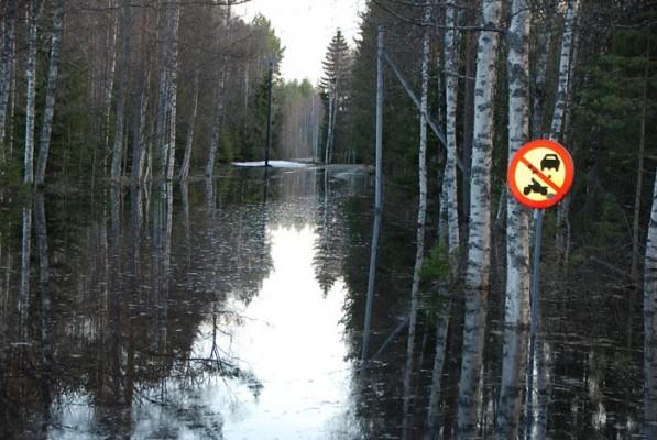 12 maj 2018. Vägen upp mot Skogs.